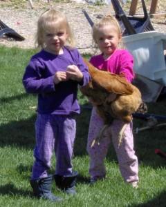 Pet Chicken - Copyright Your Family Ark LLC