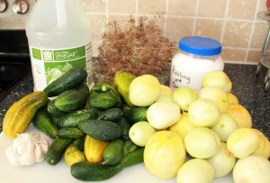 Garden Fresh Dill Pickle Ingredients - Copyright Your Family Ark LLC