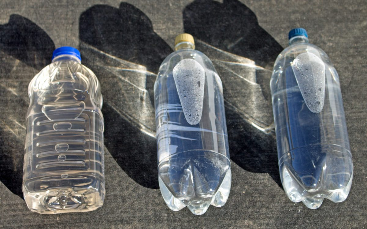 The Pet Bottle Safety Debate The Provident Prepper