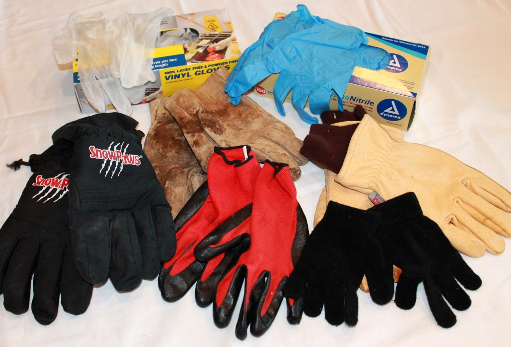 Gloves Copyright Your Family Ark LLC