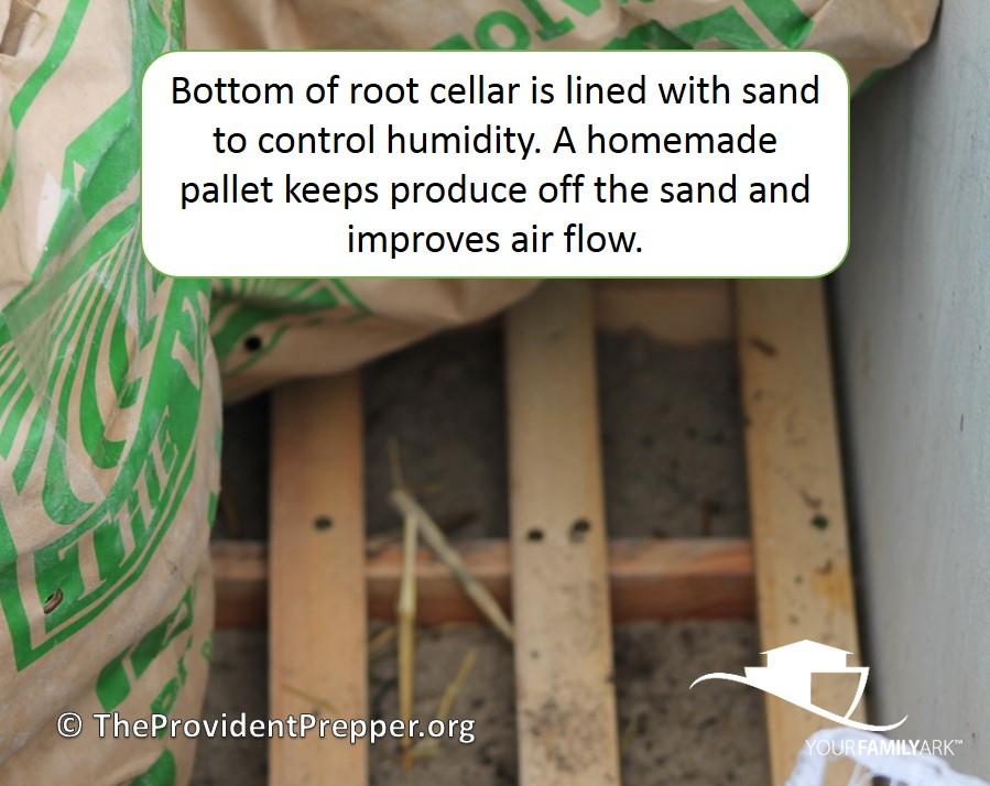 Buried freezer root cellar