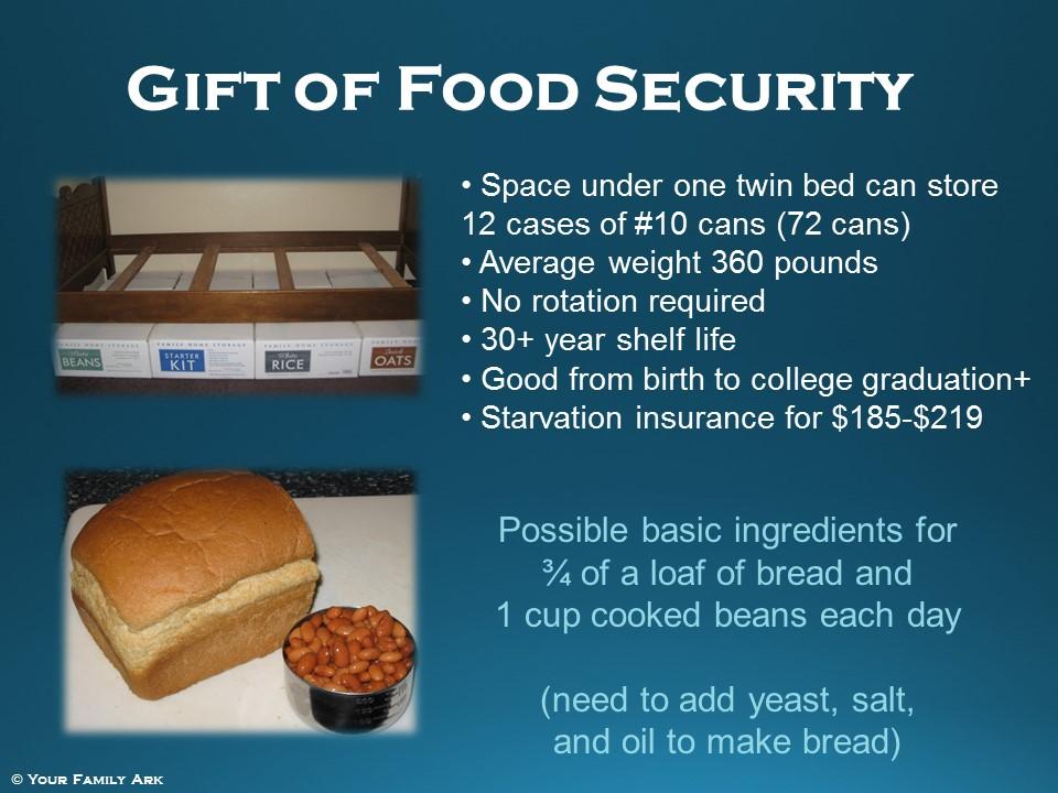 Food Storage Under Twin Bed