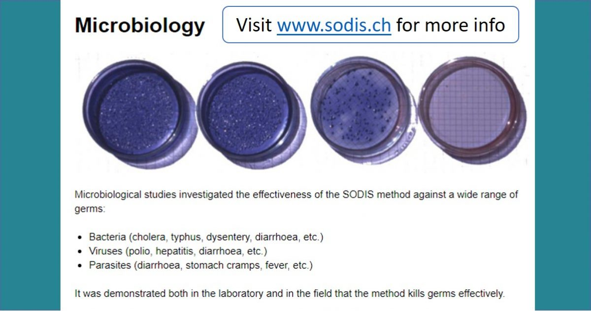 Microbiology of SODIS