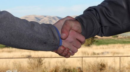 A Wise Prepper's Guide to Bartering Skills and Supplies