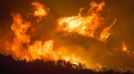 Wildfire Evacuation: Prepare Now to Protect Your Family
