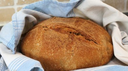 Incredible Survival (and Daily) Bread Using Only Wheat, Salt and Water