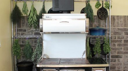 Tips for Air Drying and Storing Culinary and Medicinal Herbs