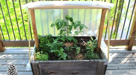 Step-by-Step Inexpensive Patio Greenhouse or Super Simple Cold Frame